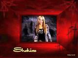 Shakira Resimleri